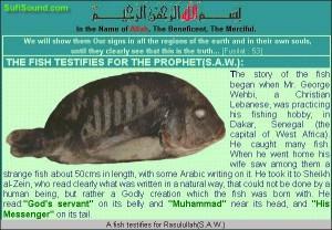 Ikan dengan sisik kalimat Allah dan nabi muhammad saw, can u see it?